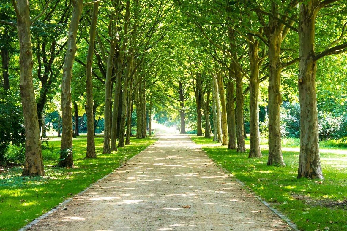 Tiergarten, Berlin, Allemagne