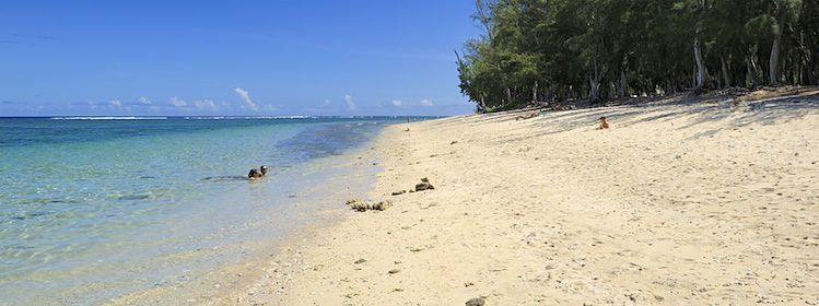 Les 10 plus belles plages de La Réunion