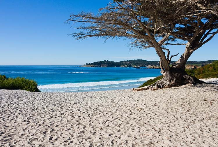 Carmel beach Californie pacifique plage