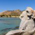 RAndrei/Shutterstock