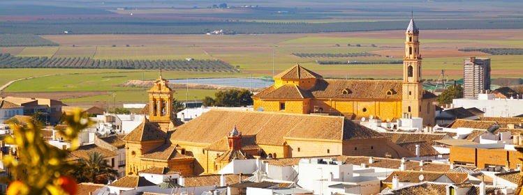 Nos 11 incontournables d'Andalousie