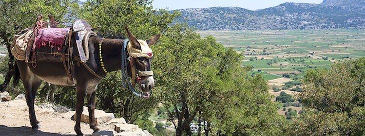 10 villages irrésistibles en Crète