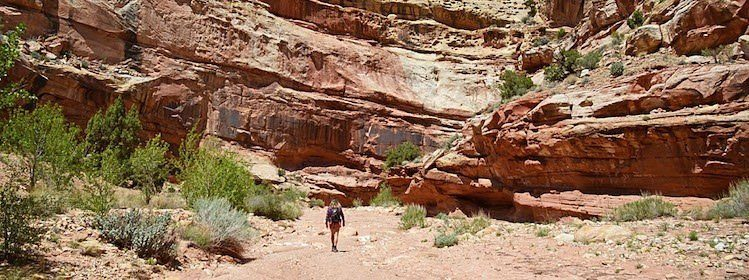 À la découverte de Capitol Reef National Park