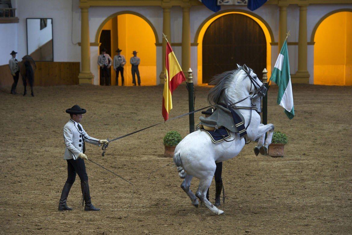 Jerez de la Frontera École royale andalouse d'art équestre