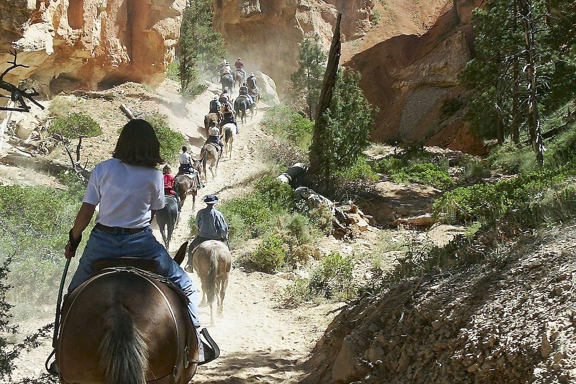 Randonnée à dos de mule