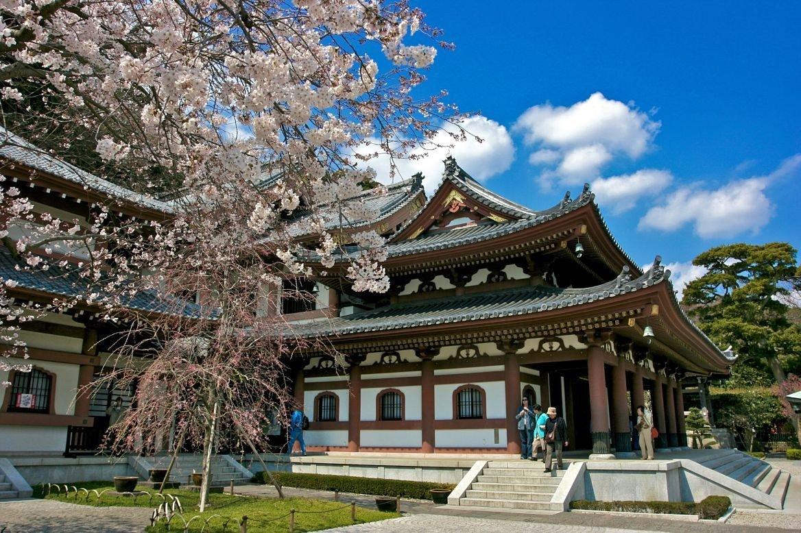 Temple de Hase-dera lors de l'hanami, Kamakura