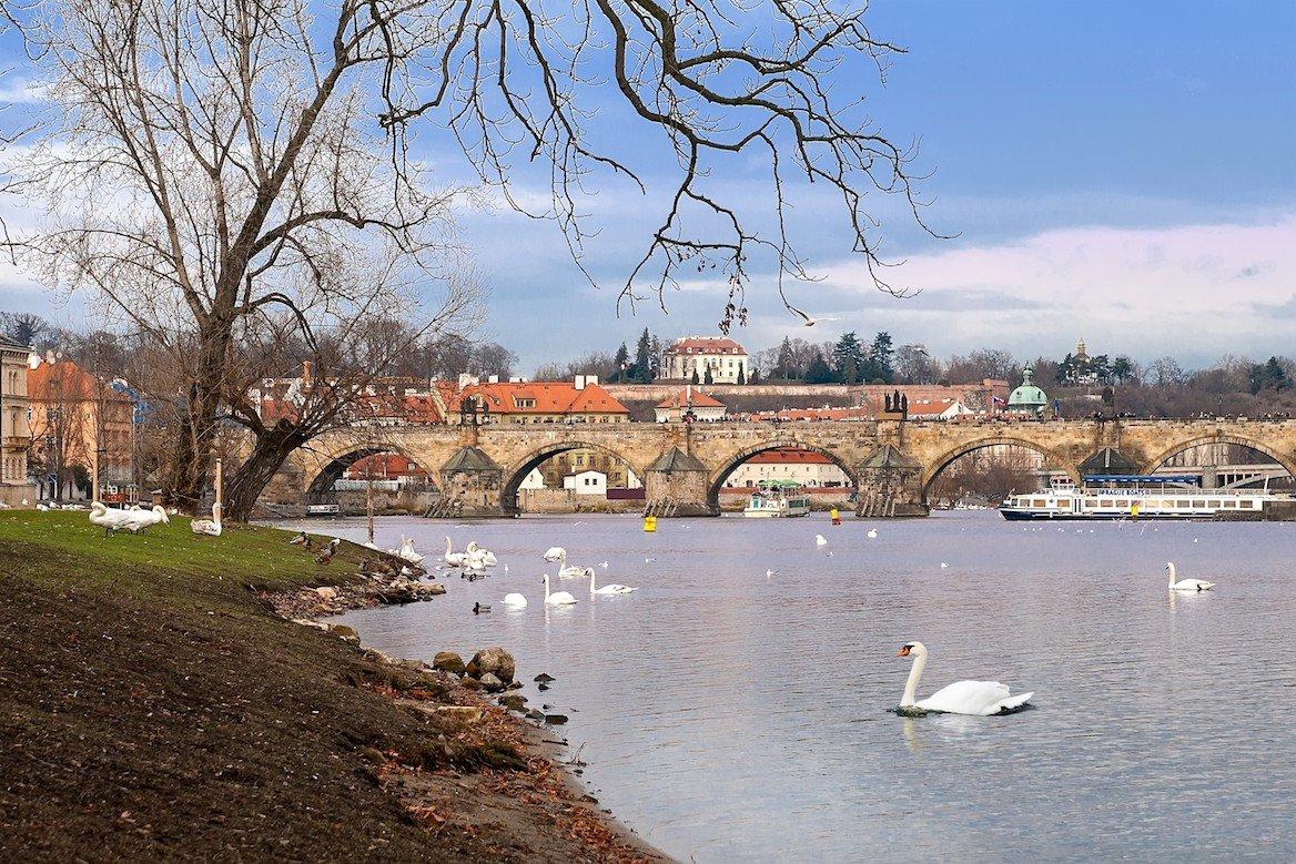 Berge de l'île Kampa, et vue sur le pont Charles, Prague ©Mariia Golovianko/Shutterstock