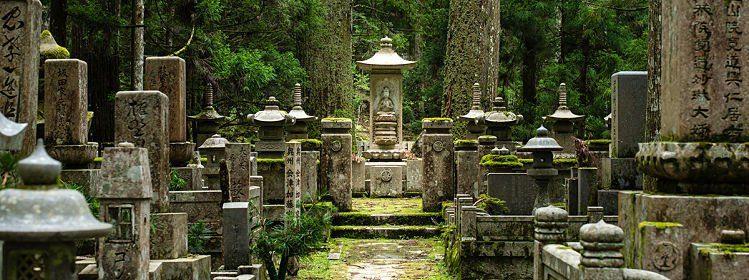 Le Mont Koya : d'anciens temples bouddhistes cachés dans une épaisse forêt