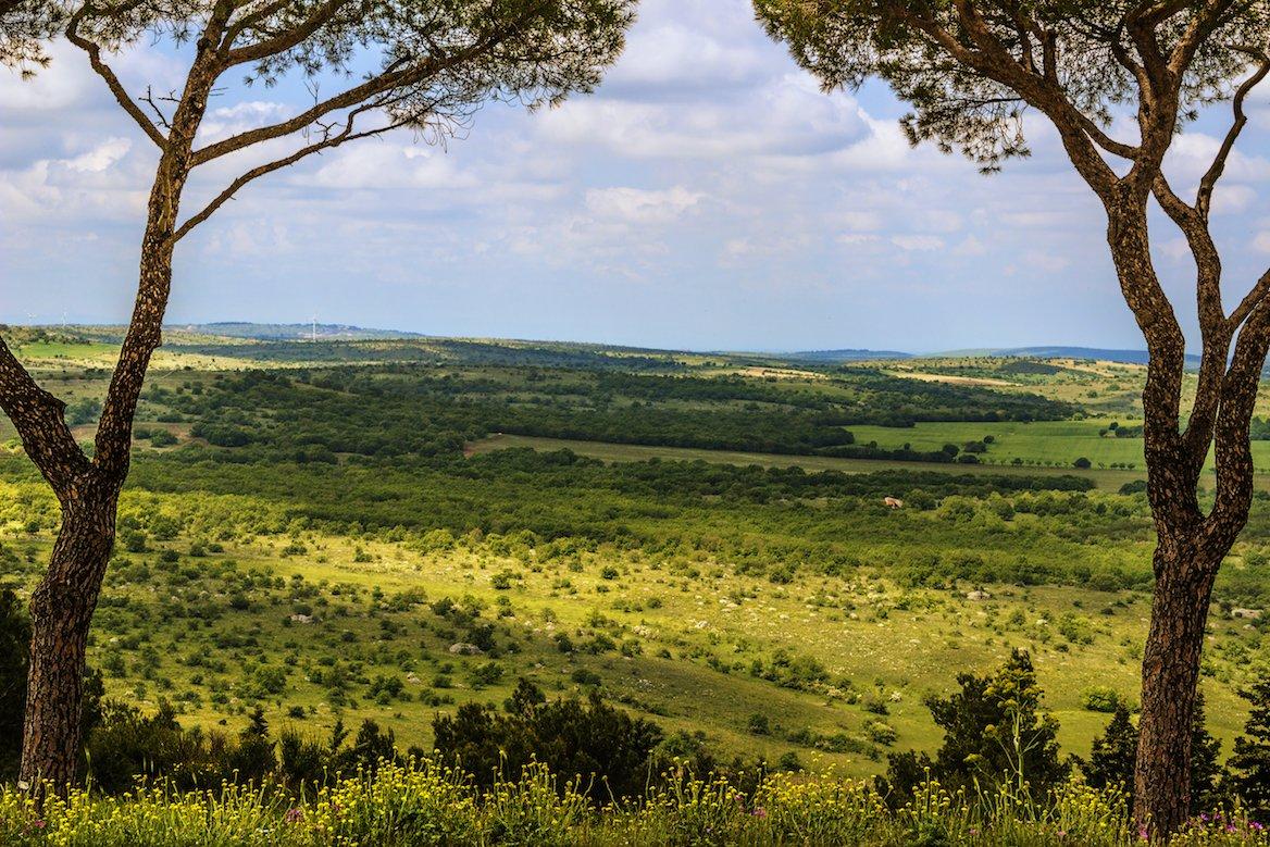 Pouilles activités, Le parc national des Hautes-Murge (Parco Nazionale dell'Alta Murcia), région des Pouilles, Italie ©vololibero/Shutterstock
