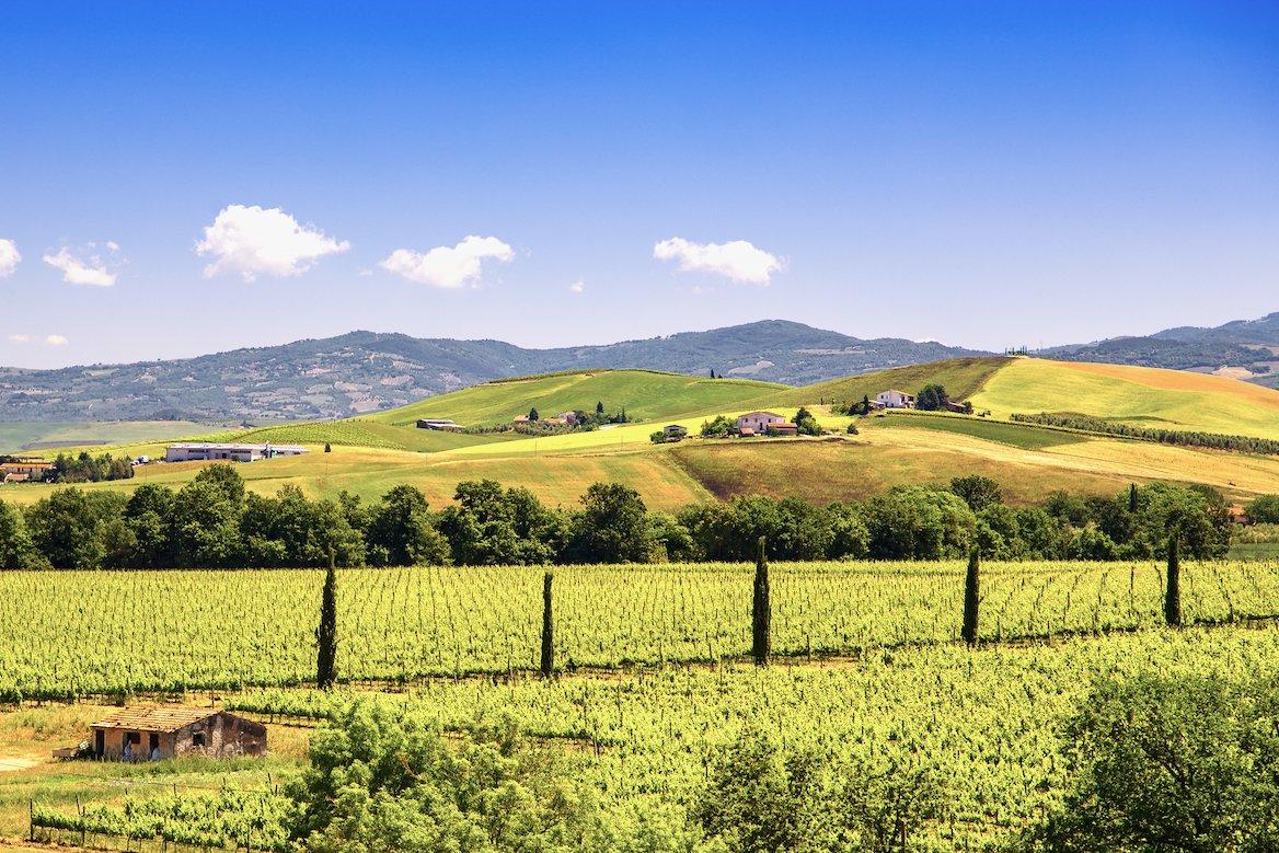 montalcino-vignes-vin-paysage-italie-toscane
