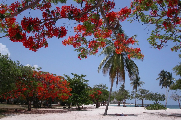 Plage: Playa Ancón, Cuba
