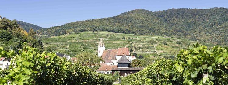 5 activités pour découvrir Vienne