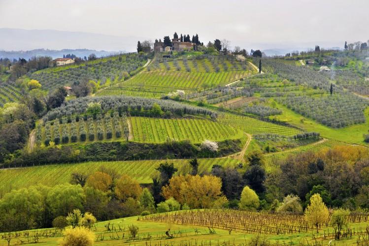 Toscane Italie activité Agrotourisme