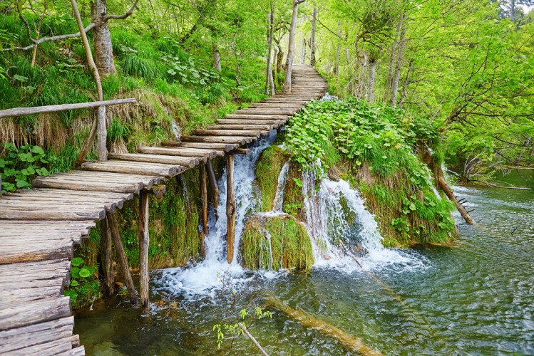 Les pontons de bois du parc national des lacs de Plitvice