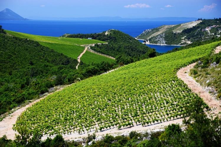 Dalmatie Croatie