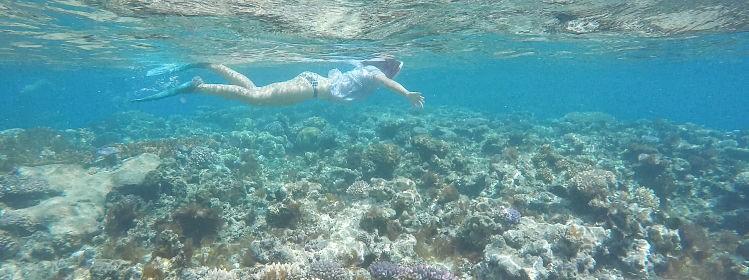 Nouvelle-Calédonie : les plus beaux spots de snorkeling