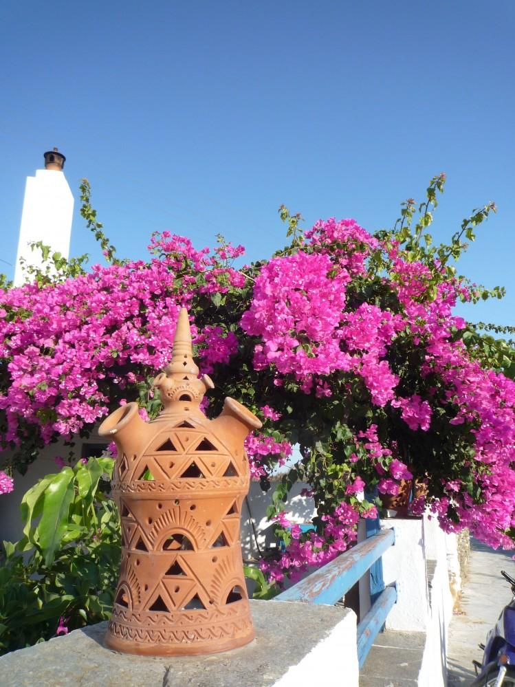 cyclades îles poterie Sifnos fleurs
