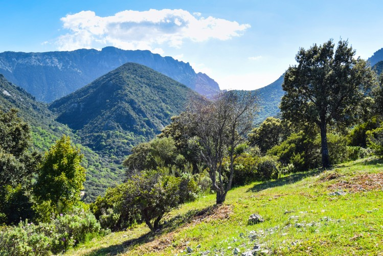 andalousie grazamela vallees c est aussi insolites