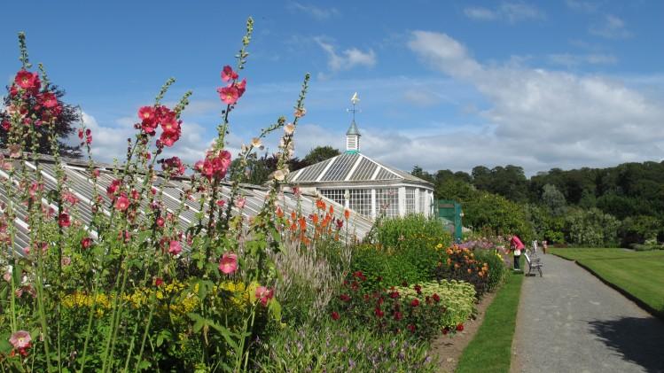 irlande velo balade jardin fleurs Mount Congreve