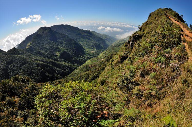Horton Plains Sri Lanka randonnée