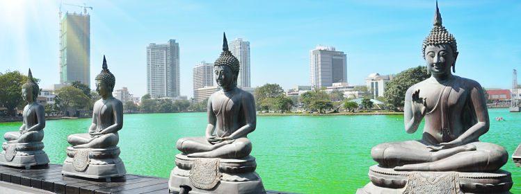 Sri Lanka : si vous aimez
