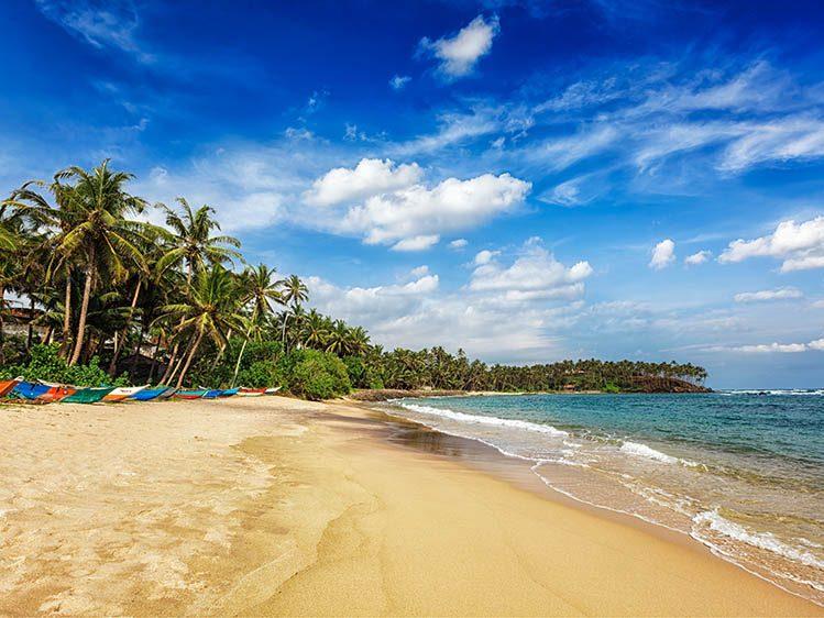 plage Mirissa Sri Lanka logement