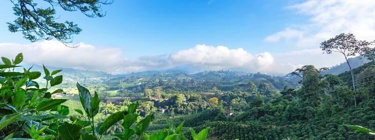 8 activités à faire en Colombie