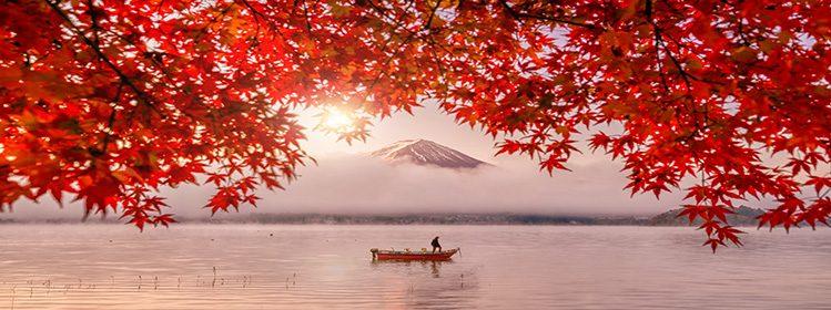 7 activités à faire au Japon