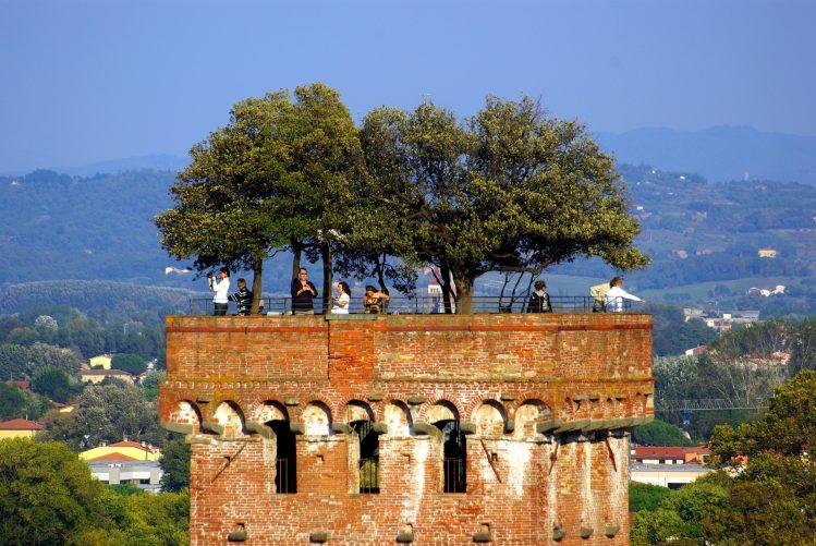 lucca toscane torre road trip
