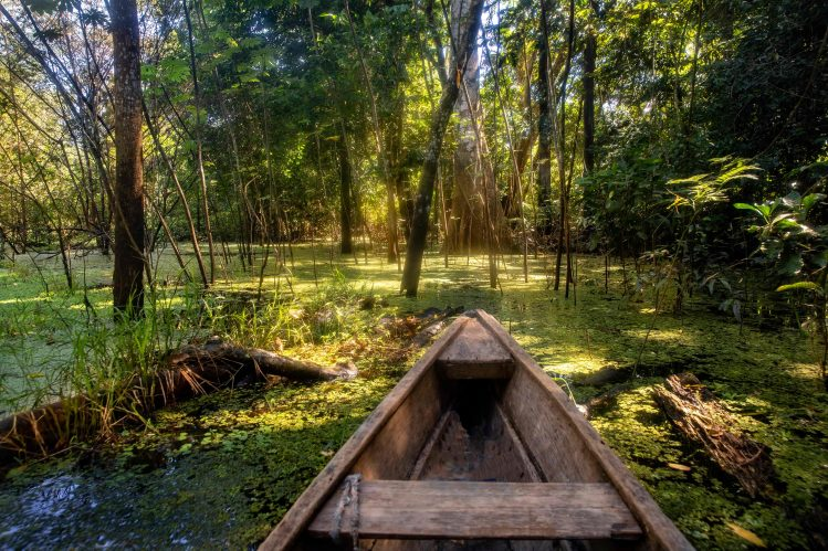 forêt amazonienne colombie canoe activites