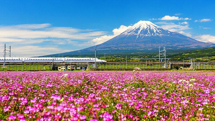 Shinkansen mont Fuji Japon insolite