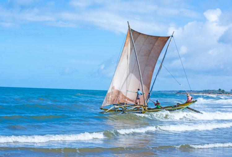 bateau traditionnel peche lagune negombo sri lanka activites