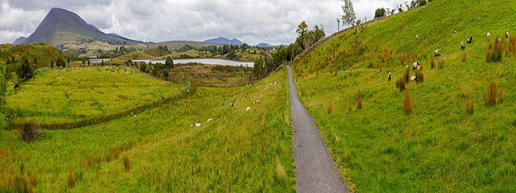 6 activités à faire en Irlande