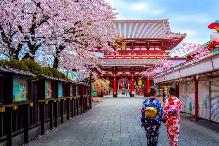 cerisiers fleurs geishas temple senso ji askusa tokyo japon ou partir printemps 2019