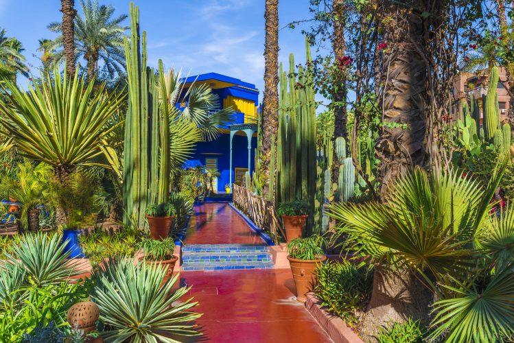 jardin majorelle marrakech ponts de mai