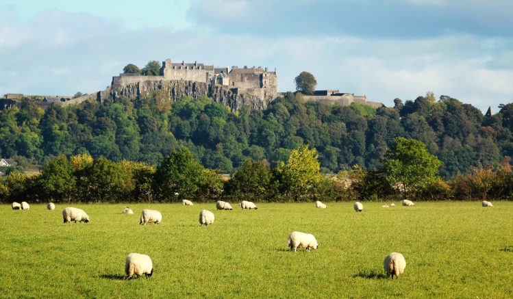 Écosse, famille enfants chateau stirling