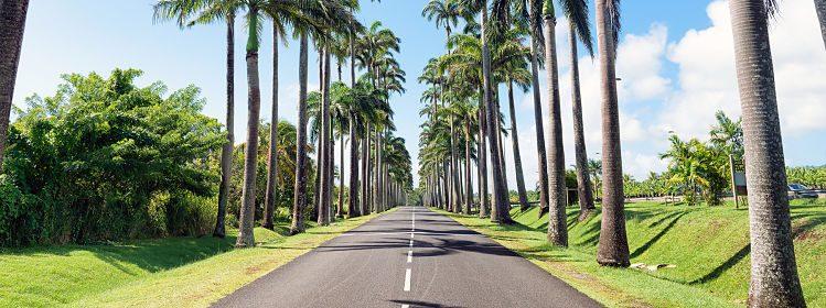 Organiser son road trip en Guadeloupe