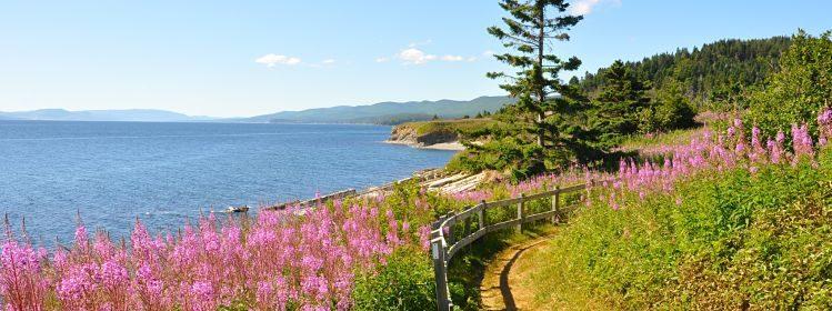 Les plus beaux parcs nationaux du Canada