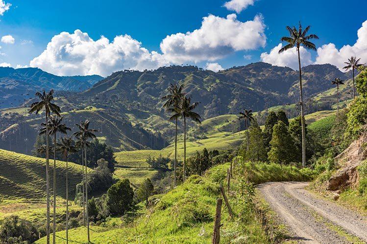 Paysage colombien, La Samaria, Colombie livres avant de partir