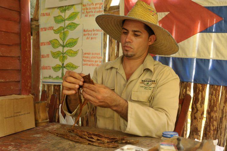confection cigare Viñales cuba