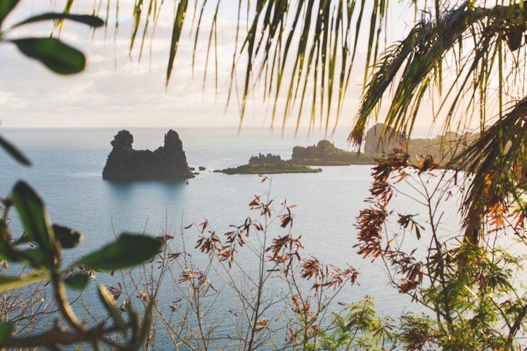 poule Hienghene Nouvelle-Caledonie road trip