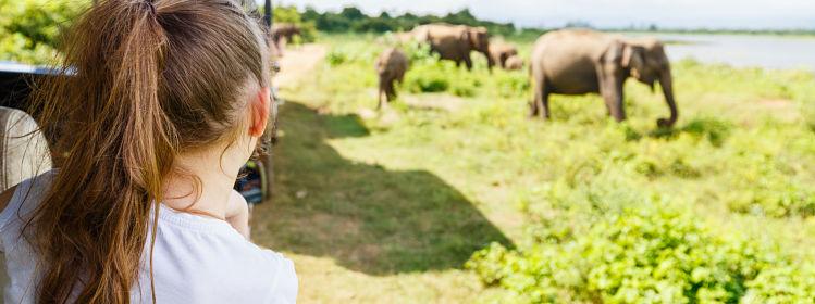 Que faire au Sri Lanka avec des enfants?