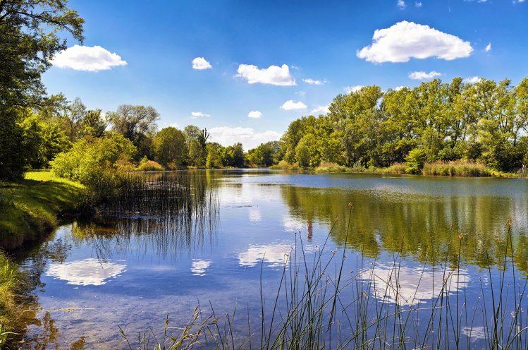 parc national auen vienne danube insolite hors des sentiers battus