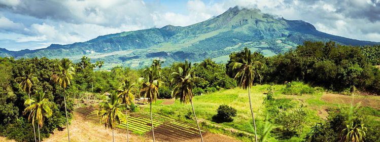 Martinique: où faire de la randonnée?