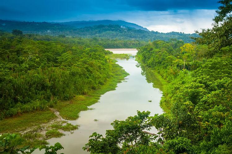 Amazone amazonie rivières livres voyage
