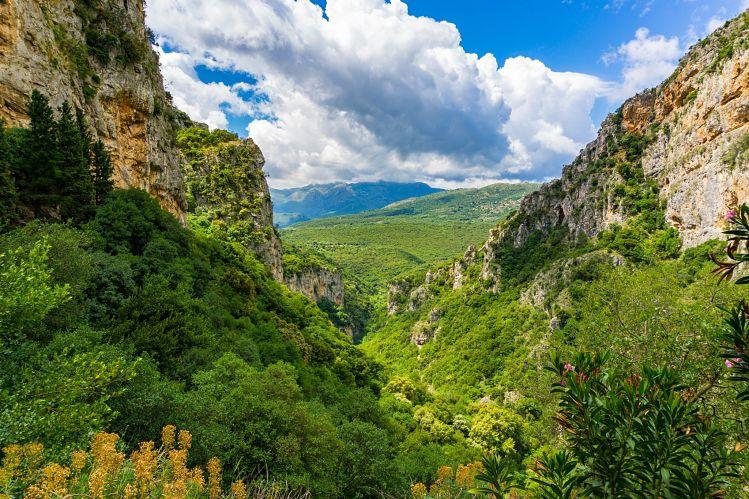 Grèce randonnées Lousios gorges