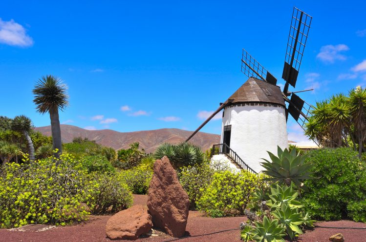 Moulin à Antigua, Fuerteventura