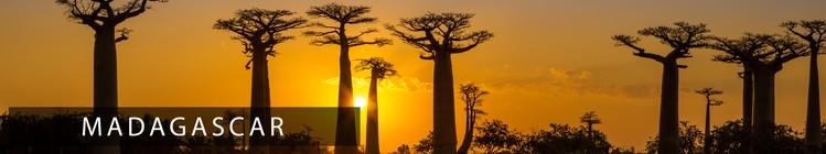 Découvrir Madagascar